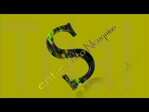 VIDEO   EL son Chamamecero