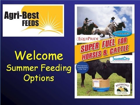 Looking for 50lbs+ AVG on Your Calves or Yearlings?  SweetPro Summer Feeding Options