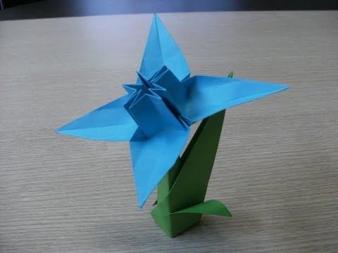 Narcyz origami
