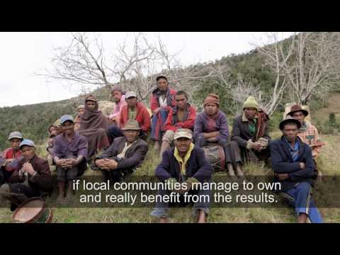 Episode 2: Madagascar (REDD+ and the future of African Forests)