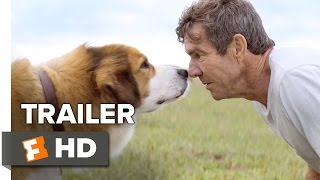 A Dog's Purpose (2017) Trailer – Dennis Quaid Movie
