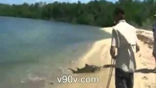 サメを狙う