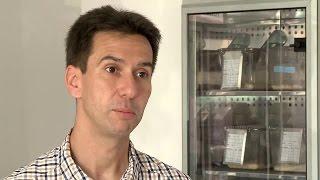 Kutatói portrék - Dr. Kvell Krisztián: Az immunrendszer öregedésének kutatása