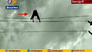 Watch: Young man climbs electric pole; walk on high tensio..
