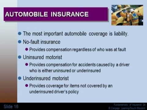 Introduction to Insurance Basics