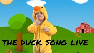 the duck song live verson