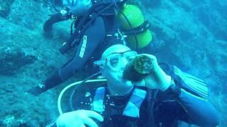 Boca cangrejo - tenerife