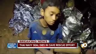 Thai Navy SEAL dies in cave rescue effort
