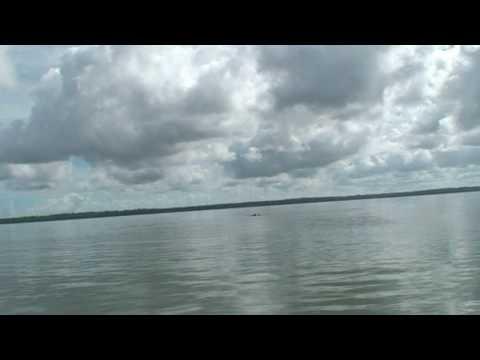 Suriname 2008  op zoek naar dolfijnen