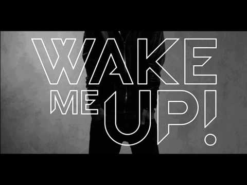 Baixar Avicii ft. Aloe Blacc - Wake Me Up (Radio Edit)