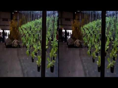 DEUS EX HOMINE 3D Moco Golden Gate 3D GG3D