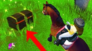 I Found a Treasure Chest ! Star Stable Online Horse Quest Video Game