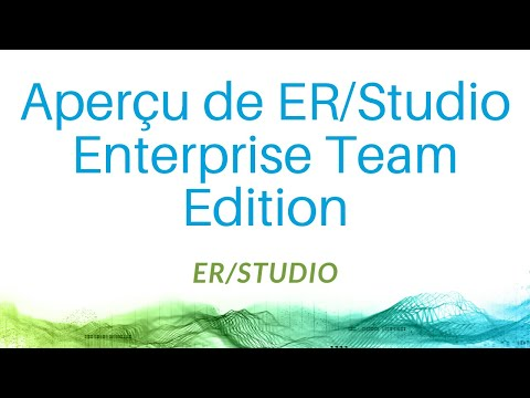Aperçu de ER/Studio Enterprise Team Edition