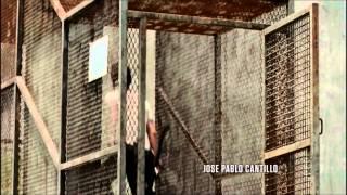 The Walking Dead Eminem I Till Collapse