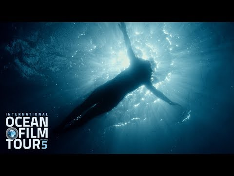 International OCEAN FILM TOUR Volume 5 | Official Trailer