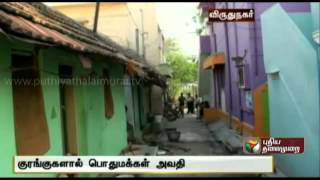 Monkey Menace at Palavanatham spl video news 26-04-2014