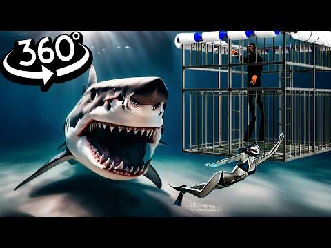 360 Video VR SHARK 360 VR 4K - OMG Will you survive?