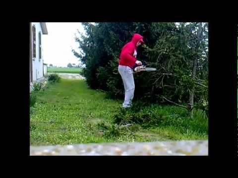Video CGcPl41zDWE