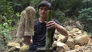 How to make snake traps, survival in tropical rainforest, ep 90