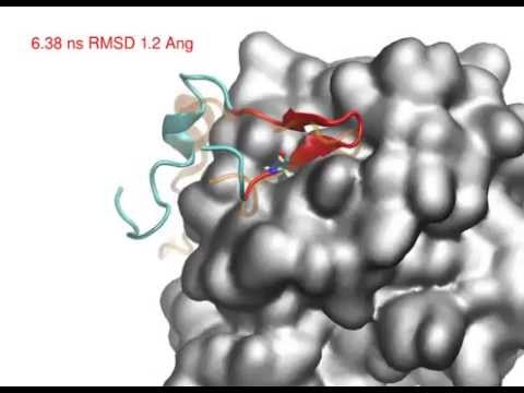 Molecular docking of RAD51-BRCA2 BRC repeat complex
