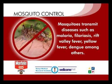 Tip 1: Mosquito diseases -- the diseases they transmit