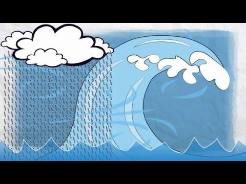 Insurance 101 - Water Damage Basics