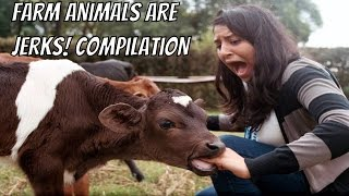 Farm Animals are Jerks