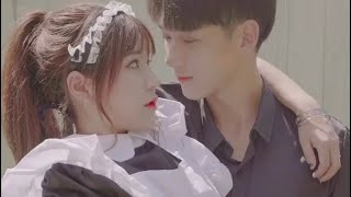 Boss Falling In Love With Cute Maid/High School Love Story
