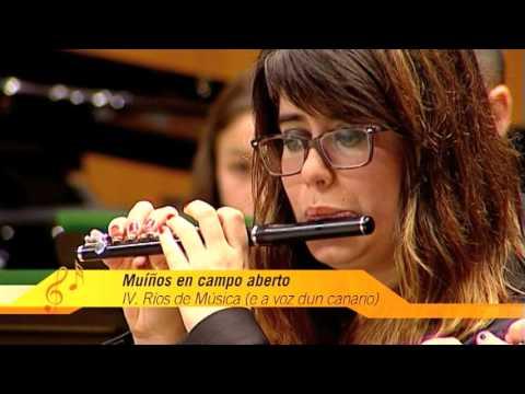 BANDA MUNICIPAL DE MÚSICA DE OUTEIRO-RÁBADE-BEGONTE, 'Muíños en campo aberto (vida musical dunha escola galega' de Manuel Mª Veiga