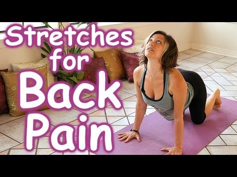 stretches for back pain relief how to stretch routine