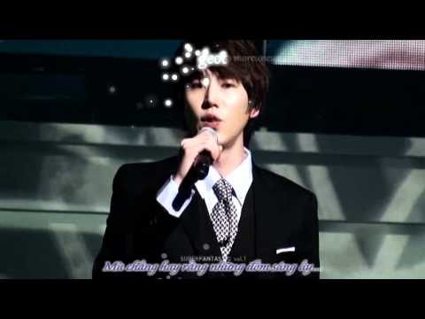 [Vietsub+Kara] Snow flower (Korean ver.) - KyuHyun.avi