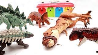 Let's Defeat T-Rex, which annoys Dino toys. Jurassic World 2 Fallen Kingdom Dinosaur Toys! 공룡 Vs 공룡