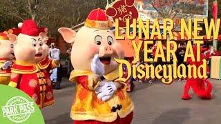 Lunar New Year 2019 | Disneyland
