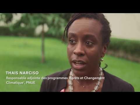 REDD+ et l'avenir des forêts africaines