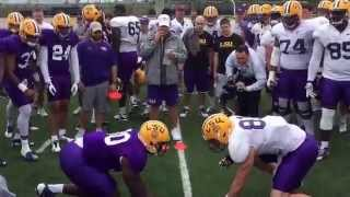 Big Cat Drill gets testy at LSU