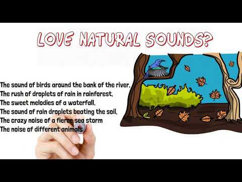 Soothing Nature Sounds To Relax And Discharge Stress