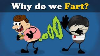 Why do we Fart? | #aumsum #kids #science #education #children