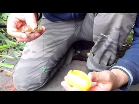 ловля толстолоба со дна рецепт технопланктона