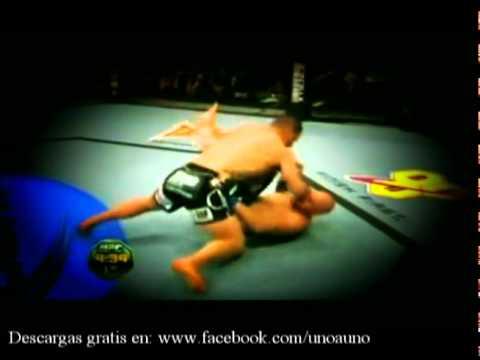 Cain Velasquez ::: UFC :: Le gana a dos Santos- vuelve el titulo