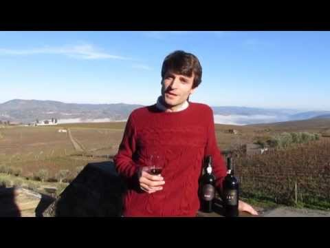 Naked Wines Christmas video