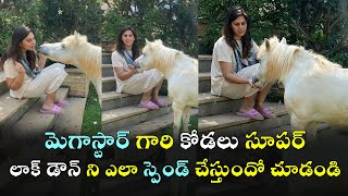 Upasana Konidela fun time with her horse daisy..