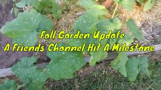 Fall Garden Update | A Friends Channel Hit A Milestone