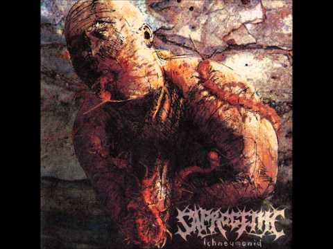 Saprogenic - Bloodwork