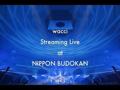 wacci Streaming Live at NIPPON BUDOKAN
