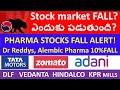 Stock Market Sudden FALL?, Pharma stocks fall, Hindalco stock, Dlf Stock