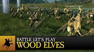 Realm of the Wood Elves Battle preview image