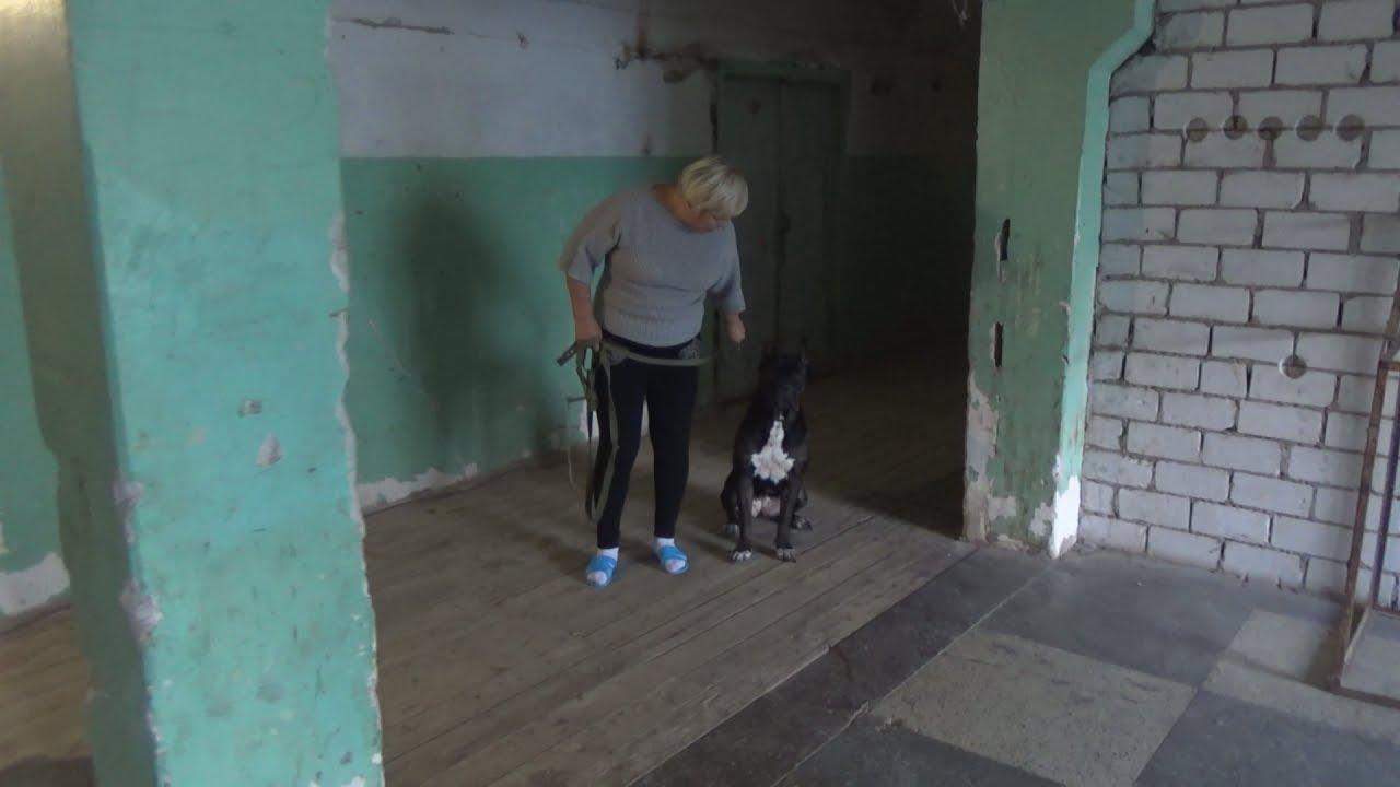 Волгоград: 18 лет в заброшенном общежитии