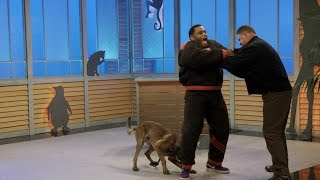 Dog Bites Host: See Anthony Anderson Take On An Attack Dog
