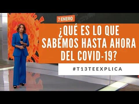 ¿Qué es lo que sabemos hasta ahora del Covid-19? #T13TeExplica