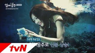 The Idle Mermaid- User's guide: Mermaid? Mermaid Jo Bo-ah!